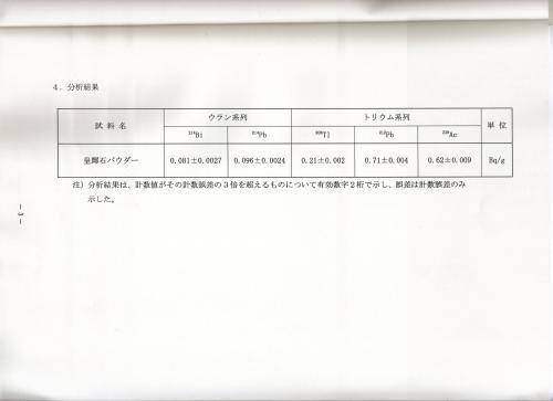 4ページ目・分析結果